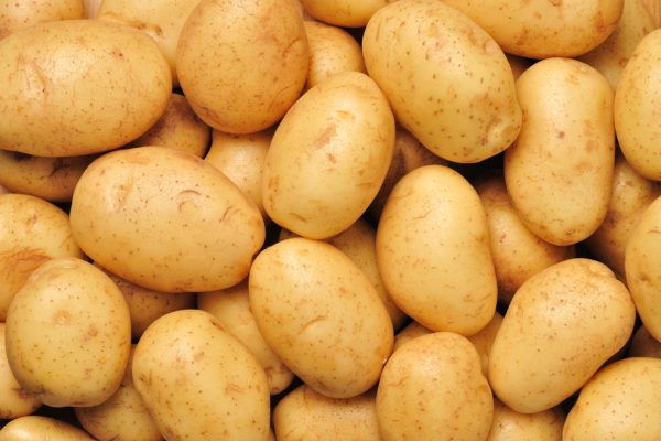 Potatoes for peace: how the humble tuber stopped conflicts in Europe