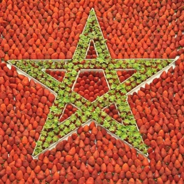 Morocco - Spain's Main Supplier Of Fruits & Vegetables