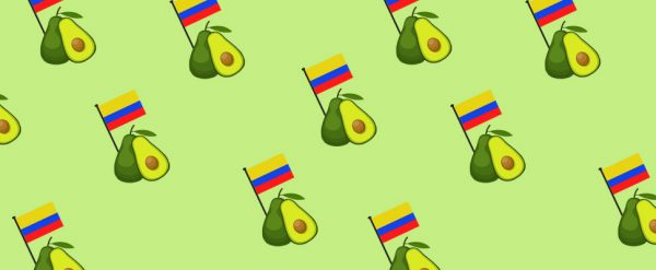 First Colombian Avocados Reaches China