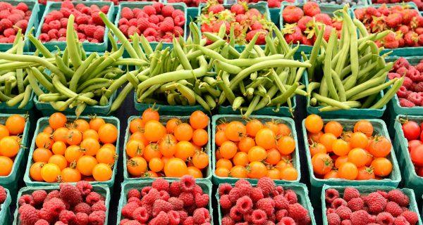Fruit importers seek new European trade routes