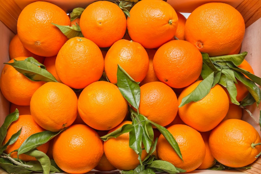 Orange boom a boon for Egypt